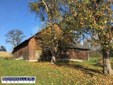 Anwesen in Wels Land - gut geeignet für Wohnen & Arbeiten