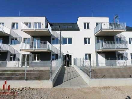 DG- NEUBAUERSTBEZUG, SOFORT beziehbar, 3 Zimmer, West-Balkon, Ziegel-massiv, PROVISIONSFREI ! ,Ruhelage, Top Infrastruktur…