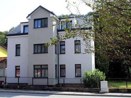 Toprenovierte 4-Zimmer Wohnung in zentraler Lage in Eichgraben