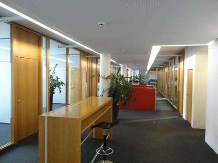 moderne und flexible Büroräumlichkeit zu vermieten