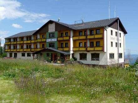 Alpenhotel im Schigebiet