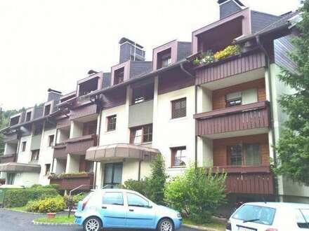 Herbstaktion: 3 Monate Hauptmietzinsfre!!! 3-Zimmer-Familienwohnung in Eisentratten (Kärnten)! Provisionsfrei!