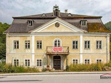 EXKLUSIVER LANDSITZ - Renovierungsbedürftiges, sehr schönes Herrenhaus!