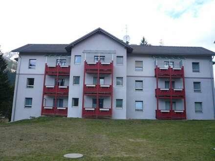 Sonnendurchflutete Wohnung in PATERGASSEN!! Provisionsfrei!