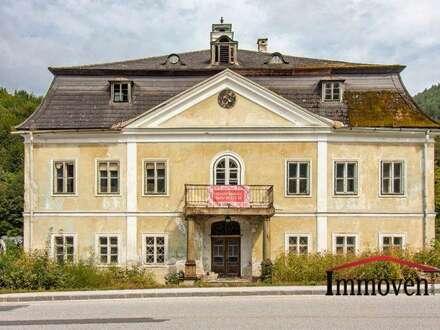 HISTORISCH und ROMANTISCH - EXKLUSIVER LANDSITZ – renovierungsbedürftiges Herrenhaus