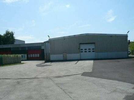 Beheizte Lagerhalle mit 1.587 m² Linz/Leonding/B1