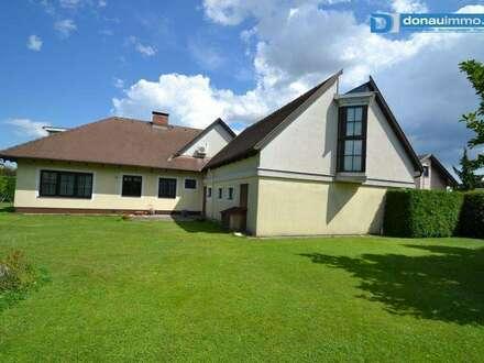 2601 Nähe Wiener Neustadt Villa mit separatem Bürobereich
