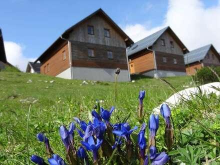 Panorama-Ferienhaus/Hütte in Top-Lage auf dem Feuerkogel