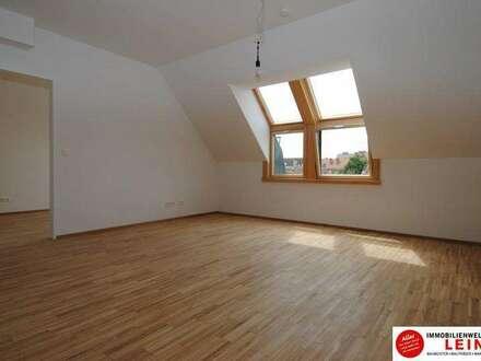 Himberg Zentrum - sehr schönes 50m² Büro im Dachgeschoß