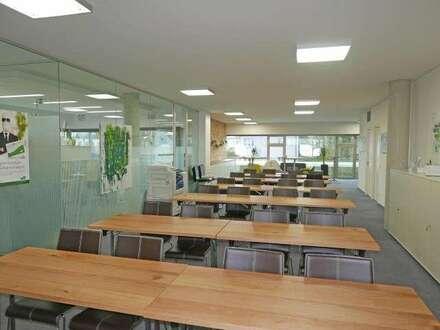 Modernes Büro mit Blick ins Grüne