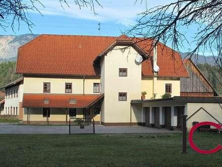Mehrfamilienwohnhaus ohne Stallnebengebäude in ruhiger, sonniger Wohnlage