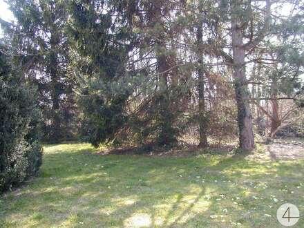 Altbauwohnung mit uneinsehbaren Innenhof und schönem Obstgarten! RUHIG - ZENTRAL - WIEN NÄHE !