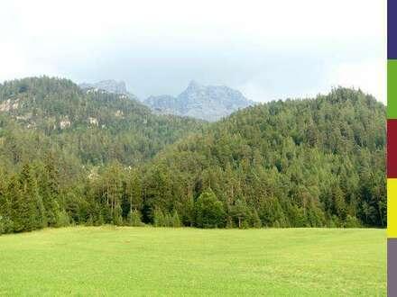 Mondernisierter Bauernhof Milchviehbetrieb Tirol