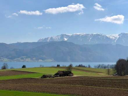Tolle Erstbezugs-Apartments am Attersee