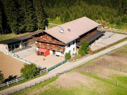 """Bauernhaus mit Wirtschaftsgebäude und Pferdestallung """"seltene Gelegenheit"""""""