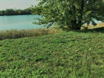 3481 Felser See - Ihr Massivhaus schlüsselfertig inkl. Bodenplatte und Wärmepumpe