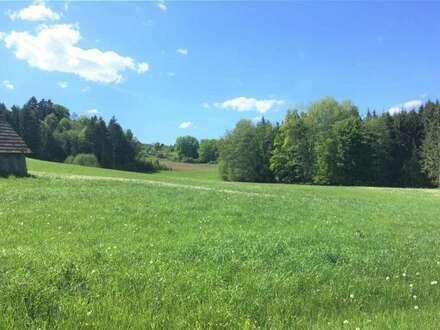 Stainz Schlieb, Ackergrundstück mit 2,7 ha zu kaufen.