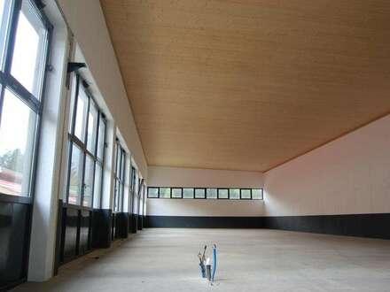 Halle in zentraler Lage - 360m²