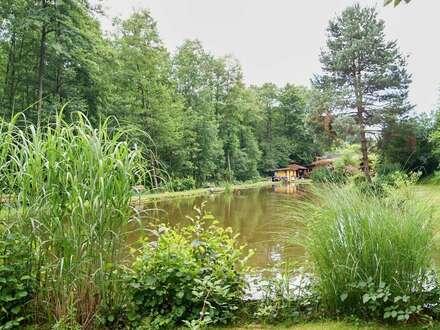 Großzügige Fischteich-Anlage nahe Graz - Eigenes Wasser-Recht und vielfältige Nutzungsmöglichkeiten - Zucht, Fischerei-Anlage,…