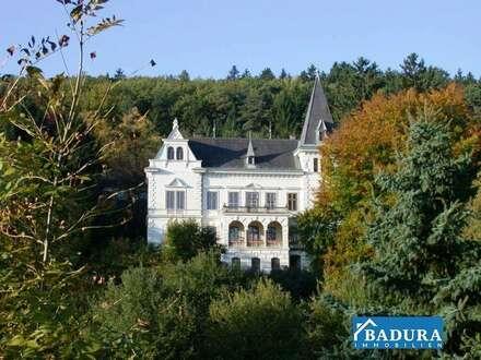Einzigartige Gelegenheit! Waldklinik Bad Sauerbrunn zu verkaufen!!