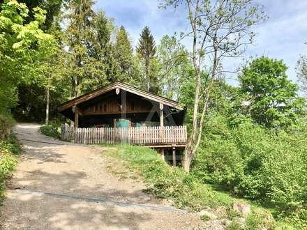 Almhütte mit 2 Wohneinheiten im schönsten Tal Österreichs zu vermieten