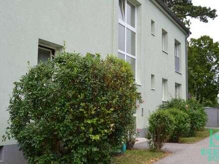 Beim Hunyadi Schloss - Sonnige Balkon-Wohnung - Blick ins Grüne!