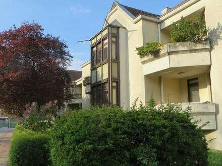 Hervorragende Miete in sanierten Wohnungen im Weinviertel. 4 Zimmer. Typ III. Gartenoption.