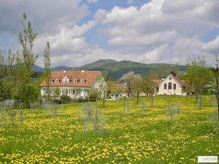 Authentisch saniertes Anwesen und Seminarzentrum aus dem 16. und 19. Jahrhundert in der Südsteiermark