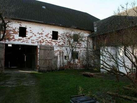 Bauernhof mit angrenzendem Auszugshaus mit wunderschönem Ausblick in die Alpen