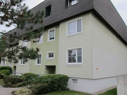 Ich bin´s – Deine Wohnung in Ebreichsdorf !