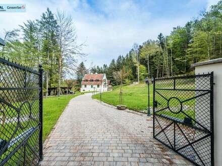 s REAL - NEUER PREIS! Herrenhaus - Villa & Gästehaus
