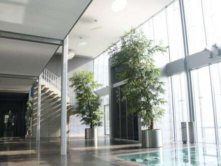 Moderne Büroräume in jeglicher Größe