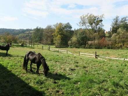 Weitläufiges Anwesen für Landleben - Genießer