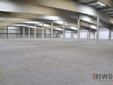 Logistik-/Lagerhalle mit LKW-Rampen!