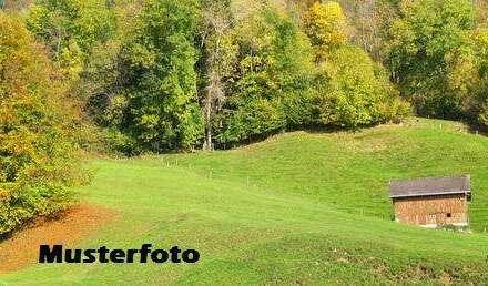 + Hofstelle mit Land- und Forstwirtschaftsflächen +
