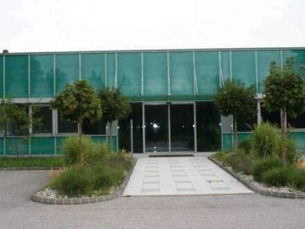 Top ausgestattete Produktionshalle mit Büro und Lager, nähe A1 Ansfelden.