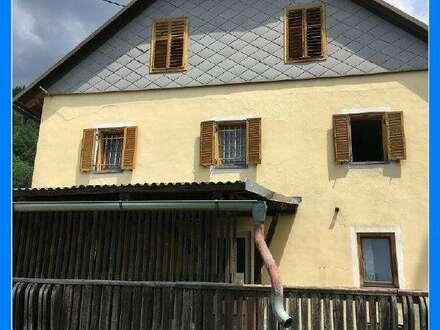Bauernhof: Große Hofstelle 30 Min von Klagenfurt - 1821