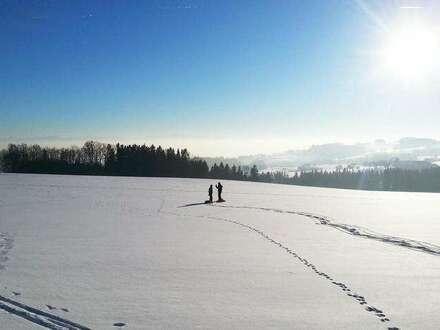 Top 3 - Haus 2: Old Mountain: Leben über der Nebelgrenze