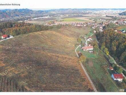 in Slow. - Weingartengrund nicht bepflanzt von 4 ha bis ca. 15 ha möglich!
