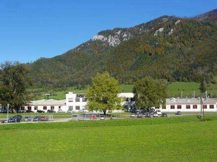 Firmenareal mit großen Hallen und Büros - Anlageobjekt in 4591 Molln
