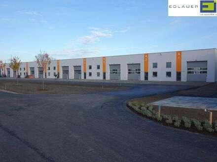NEUER GEWERBEPARK - Hallen und Büros - provisionsfrei für den Mieter