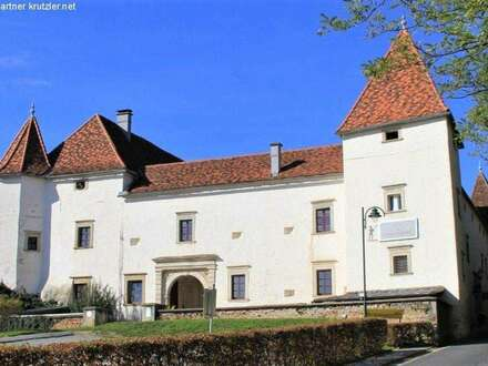 Schloss im Stil der Renaissance - Traumlandschaft in der Oststeiermark