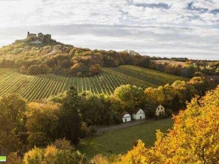 Weinviertler Weinkeller in Falkenstein