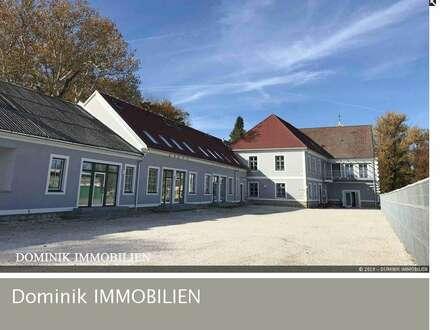 EXQUISITE 93 m² GARTENWOHNUNG IN HERRSCHAFTLICHEM ANWESEN – Top 11