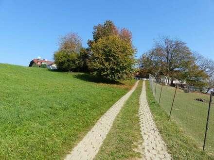 Landwirtschaft mit Panoramablick mit 6 ha Wald & Wiese, Fischteichen und Damwildgehege!