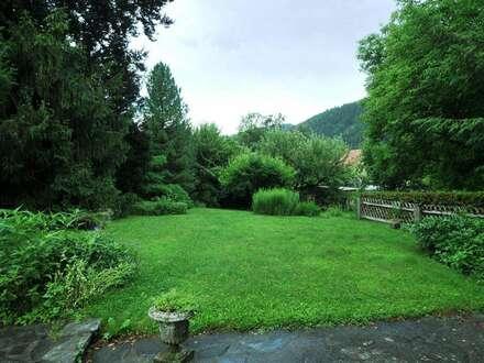 Altbau-Villa in der Burgenstadt - großzügiges Anwesen mit Parkgrund