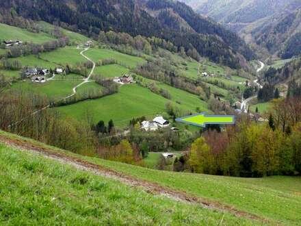 Wunderschön gelegene Eigentumswohnung bei Annaberg