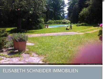Großes Haus-Pool-riesiger romantischer Grund in Schneeberg-Idylle