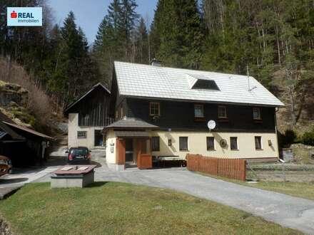 Landhaus im Mariazellerland