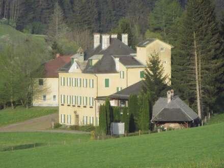 Preisreduktion! Exklusives Herrenhaus mit ca. 1,6 Hektar Grund + 7-Parteien-Zinshaus + Jagdhütte + Stallungen + san.bed.…